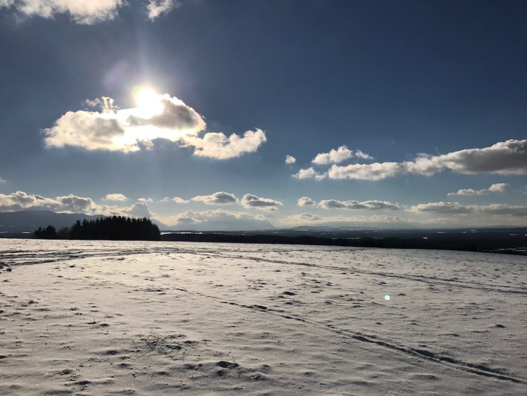 Wintertag in Muenchen